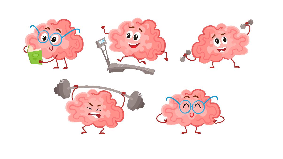 Neuroplasticity and Training